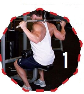Exercises   Pulldowns