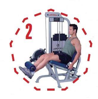 Exercises   Leg Extensions