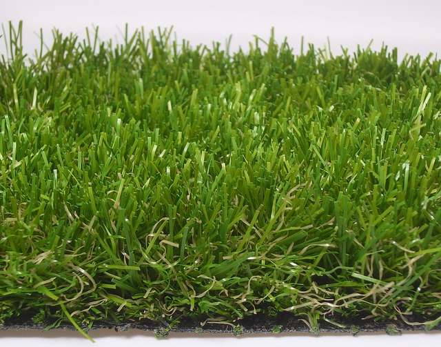grass carpet 475928 640